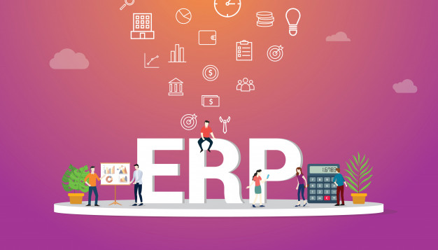 Custom ERP solution